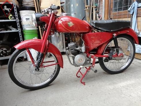 Ducati  1950