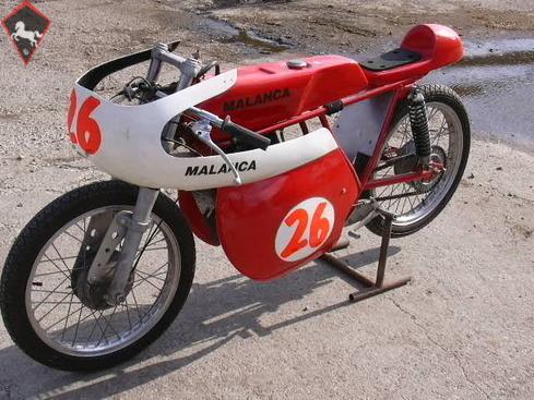 Malanca  1966