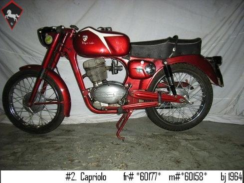 Capriolo  1964