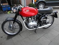 175 cc 1955