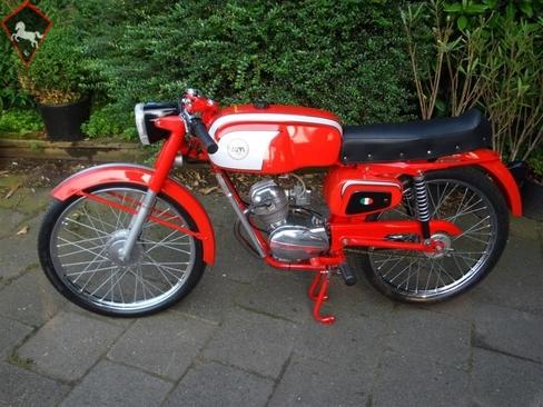 Demm  1960