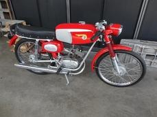 Camoscio Sport 1964