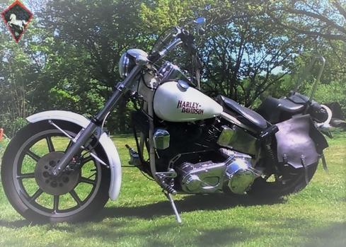 Harley-Davidson  1981