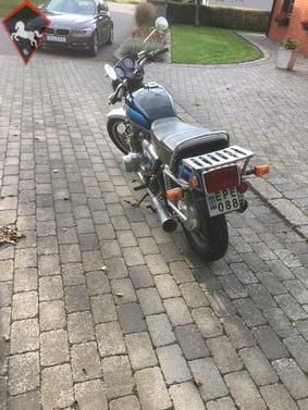 Suzuki  1981