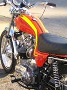Speed Triple new 1973