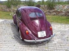Volkswagen Beetle Typ1 1950