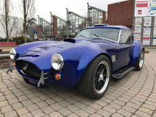 Cobra FACTORY FIVE RACING 1991