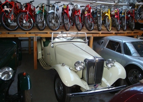 MG Other 1955