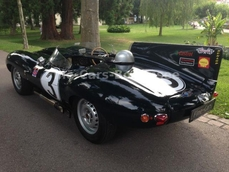 Jaguar D-Type 1975