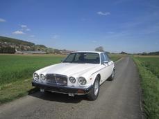 Jaguar XJ12 1982