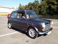 Mini 1300 1994