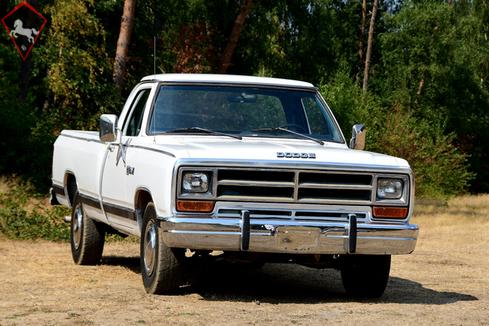 Dodge D-series 1986