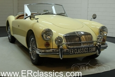 For sale MG MGA