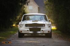 zu verkaufen Shelby GT 350 1965