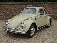 Volkswagen Beetle Typ1 1964