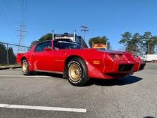 Pontiac Trans Am 1981