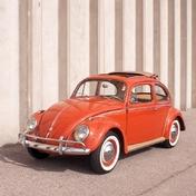 Volkswagen Beetle Typ1 1959