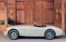 Austin-Healey 100 1956