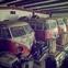 Canyon Ride Samba Busses Barn Found