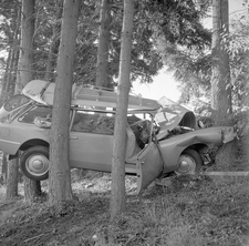 Citroen ID Safari smashed in between the trees
